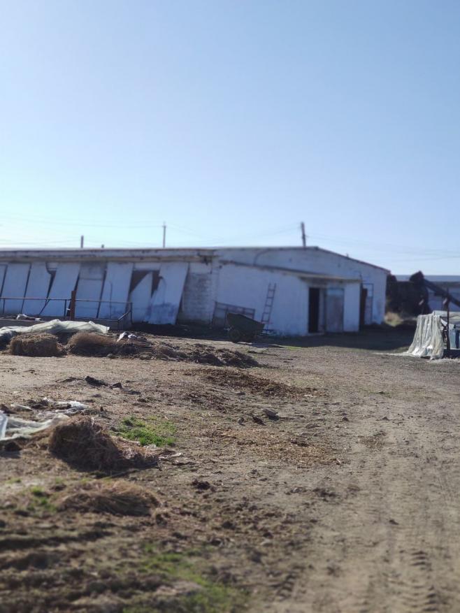 Птицеферма / Скотоводческая ферма, 6 га, 6000м2. Зангиотинский р-н.